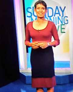 Naga Munchetty wearing the Colour Block Dress (Berry)
